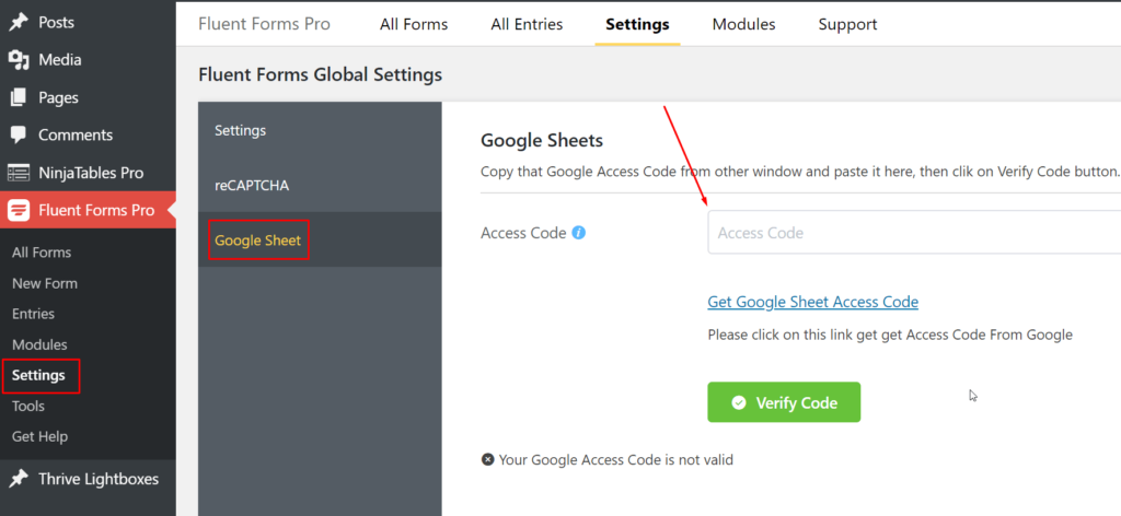 Google Sheet Access Code WP Fluent Forms